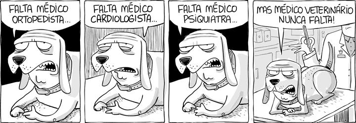 VIVAINTENSAMENTE-FALTA-MÉDICOS-VETERINÁRIOS.png