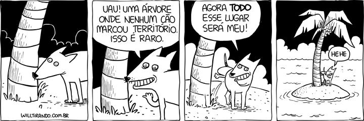 cão cachorro ilha deserta urina marcar território coqueiro xixi