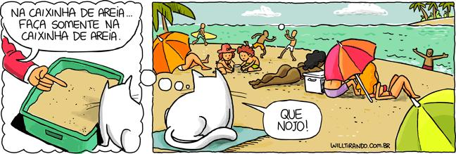 gato praia caixinha de areia necessidades nojo humanos