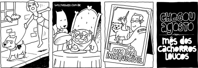 VIVA-INTENSAMENTE-AGOSTO-MÊS-DOS-CACHORROS-LOUCOS-1